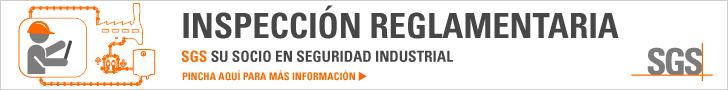 Inspección reglamentaria